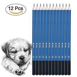 AGPtek Crayons à Croquis Crayons de Dessin, Kit de 12 PCS Graphite crayons à dessin Set 2H à 8B, Kit de crayons de croquis pour adultes Enfants débutants et artistes de la marque AGPTEK image 0 produit
