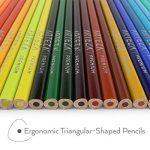 Arteza Crayons de Couleur Bois - Parfait Pour Coloriage Adulte - Mine Souple - Forme Triangulaire - Pré-Aiguisé (en Tube de 48) de la marque ARTEZA® image 3 produit