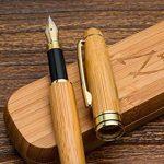 Bambou Stylo Plume avec Recharge d'encre et Coffret Cadeau - Stylos Offrant la Meilleure Caligraphie Convient aux Cartouches Standard Encre - Garantie 100% de la marque ZenZoi image 1 produit