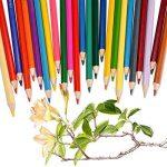 boîte de 36 crayons de couleur TOP 12 image 4 produit