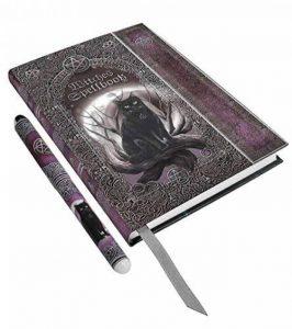 Carnet d'écriture witches spellbook, chat noir avec lune, format a5 avec stylo de la marque JapanAttitude image 0 produit
