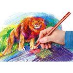 crayon de couleur gros module TOP 5 image 3 produit