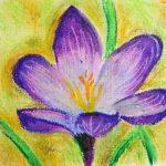 crayon de couleur pastel TOP 1 image 1 produit