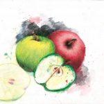 crayons de couleurs aquarellables staedtler TOP 9 image 4 produit