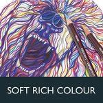 Derwent Coloursoft Crayons de Couleur (Boite en Métal de 72) de la marque DERWENT image 2 produit