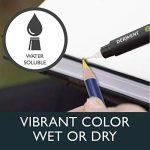 Derwent Crayons de Couleur Multicolore (Boîte de 12) de la marque DERWENT image 2 produit