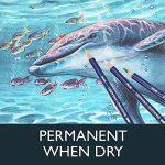 Derwent Inktense Crayons de Couleur Solubles (Coffret Bois de 72) de la marque DERWENT image 3 produit