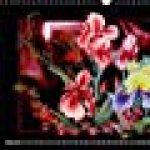 Dessins De Fleurs 2018: Dessins Au Crayon De Couleur de la marque Dusanka Djeric image 3 produit