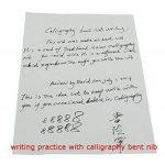 Duke Stylo-plume et stylo de calligraphie interchangeables-Étui en cuir pour stylo de la marque Lanxivi image 4 produit