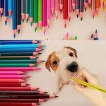 estomper crayon de couleur TOP 4 image 4 produit