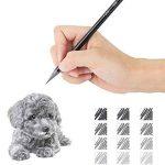 EVNEED Ensemble de crayons sans bois, 12 pcs Graphite non ligneux et croquis au fusain pour dessiner, ¨¦crire, ombrer, couleur Noir-Set de 12 de la marque EVNEED image 3 produit