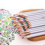 FUNRUI Crayons de Couleur Aquarellable 24 Set Dans Une Boîte En Métal, Colored Pencils Avec Un Pinceau pour Adulte Enfants Étudiants Professionnels Artiste, avec 1 Pinceau (48 pièces) de la marque FUNRUI image 4 produit