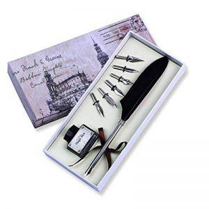 FUNRUI Rétro Plume D'Oie Stylo à Plume Calligraphie Stylo Plume Calligraphie Feather Pen Kit avec Bouteille D'Encre Vide, 6 Métal Nib de la marque FUNRUI image 0 produit