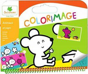 grosse craie de couleur TOP 8 image 0 produit