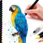 Lot de 20 stylos pinceaux - Fournitures artistiques - Pour livres de coloriage, à faire soi-même - Esquisses, carnet, calligraphie, peinture - Pinceau à eau avec pointe feutre inclus de la marque Tomaxis image 1 produit