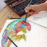MONT MARTE Set de Crayons de Couleur Premium Deluxe - 72 pièces de crayons de couleur dans une boîte en bois - Idéal pour les dessins colorés - Parfait comme cadeau pour les Débutants, Professionnels de la marque Mont Marte image 3 produit
