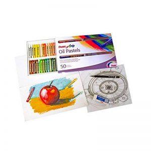 Pentel Pastels à l'huile Boîte de 50 couleurs de la marque Pentel image 0 produit