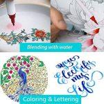 SAYEEC Coffret de feutres pinceaux aquarelle Rechargeables avec 1 stylo à eau pour estomper, Pointe souple et flexible, Pour livres de coloriage pour adulte, Manga, calligraphie etc. 12 Colours de la marque SAYEEC image 1 produit