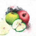 Staedtler crayons de couleur aquarelables karat, haute qualité, miscibilité des couleurs, boîte métal de 48 crayons de couleurs assortis, 125 M48 de la marque Staedtler image 4 produit