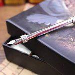Stylo Dip à Plume, ECVISION Petite Plume d'oie/porte-plume/flacon d'encre Feather Pen de la marque ECVISION image 1 produit