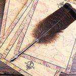Stylo Dip à Plume, ECVISION Petite Plume d'oie/porte-plume/flacon d'encre Feather Pen de la marque ECVISION image 2 produit