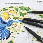 stylo plume pointe flexible TOP 14 image 1 produit