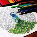 toechmo professionnel Crayons de couleur de haute qualité pour enfants et adultes Coloration et toutes les couleurs Crayon Art–Coloration Dessin Crayons, crayons de couleur Art avec étui à crayons pour croquis Artiste, Secret Garden Coloration Livre (no image 4 produit