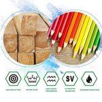 US Sense Crayons de Couleur Effet Aquarelle 36 Couleurs -Spécial Rentrée des Classes Pack de Art Dessin Crayons de coloriage de la marque US Sense image 3 produit