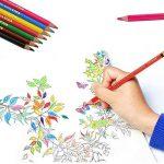 US Sense Crayons de Couleur Effet Aquarelle 36 Couleurs -Spécial Rentrée des Classes Pack de Art Dessin Crayons de coloriage de la marque US Sense image 4 produit